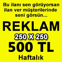 banner245
