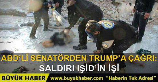 ABD'li senatör: İdlib saldırısı IŞİD'in işi