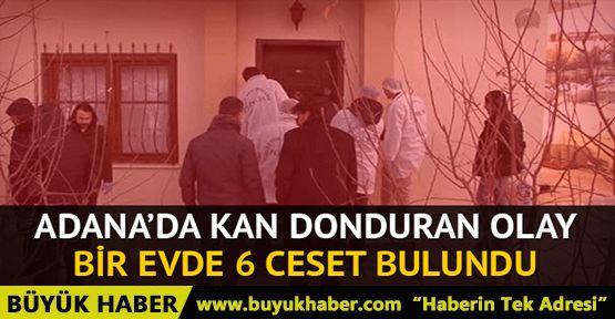 Adana'da 6 cansız beden bulundu