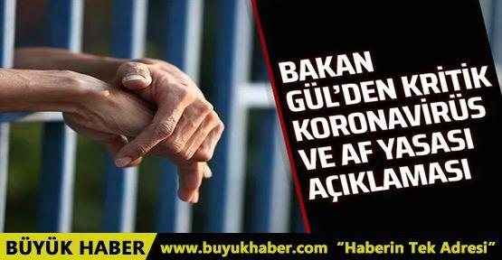 Bakan Gül'den af açıklaması
