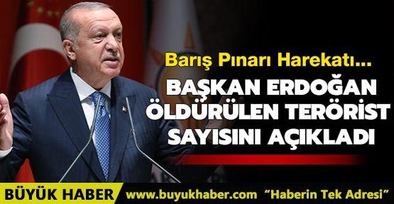 Başkan Erdoğan Barış Pınarı Harekatı'nda öldürülen terörist sayısını açıkladı