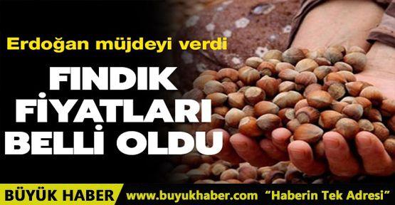 Başkan Erdoğan, fındık üreticilerine müjdeyi verdi