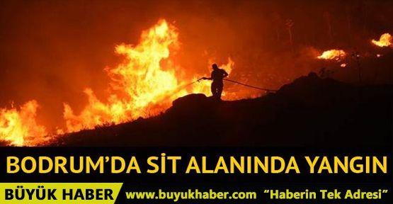 Bodrum Yalıkavak SİT alanında yangın