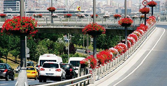 Duvarlar Çiçek Açtı, Faturası İstanbullulara Kesildi