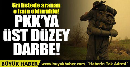 Gri listede aranan PKK'lı Sait Tanıt, bombardımanda öldü