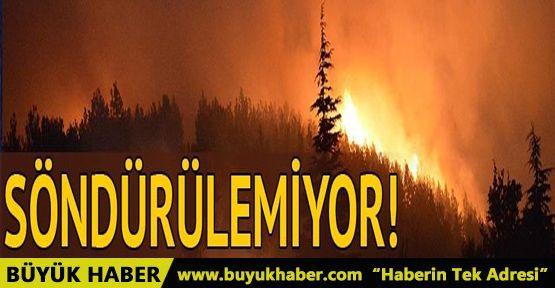 İzmir Bayındır'da orman yangını! İş makineleri yandı