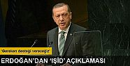 Erdoğan'dan IŞİD operasyonuyla ilgili...