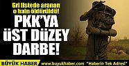 Gri listede aranan PKK'lı Sait Tanıt,...