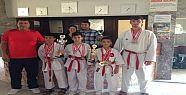 Karateciler 11 Madalya 2 Kupa Aldı