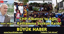 CHP Albatros'ta Ağaç Katliamına Suskun Kaldı!