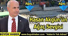 Hasan Akgün'ün Ağaç Sevgisi
