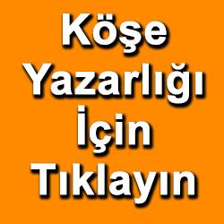 banner246