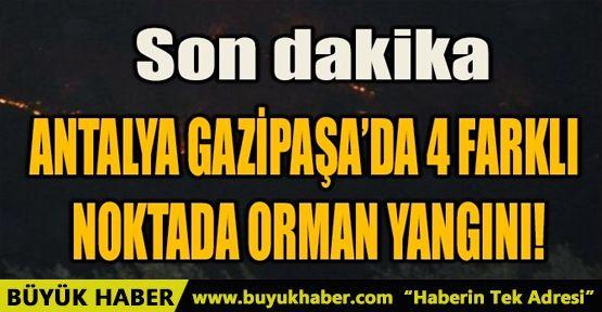 ANTALYA GAZİPAŞA'DA 4 FARKLI NOKTADA ORMAN YANGINI!