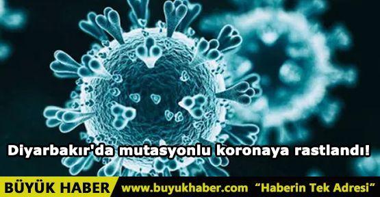 Diyarbakır'da mutasyonlu koronaya rastlandı!