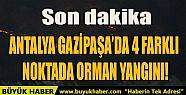 ANTALYA GAZİPAŞA'DA 4 FARKLI NOKTADA...